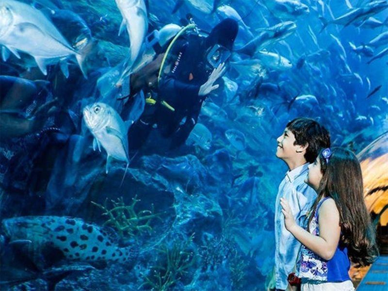 20211013 dubai aquarium