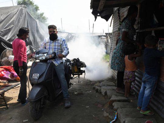 win dengue india-1634118432961