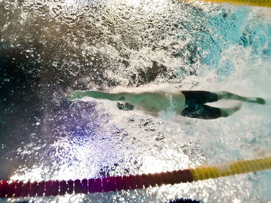 The Fina World Swimming Championships are coming to Abu Dhabi