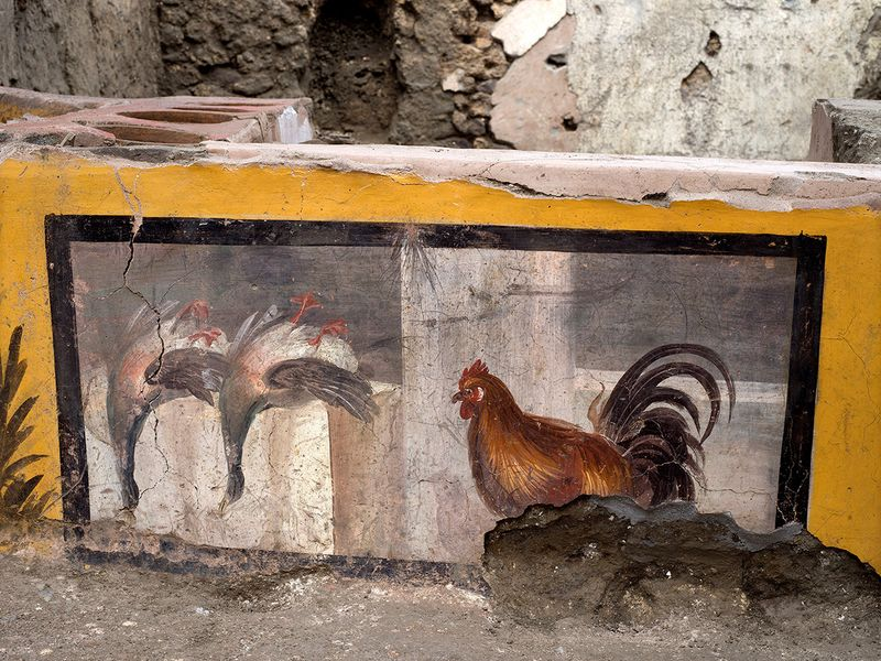 A fresco depicting two ducks and a rooster on an ancient counter discovered during excavations in Pompeii.