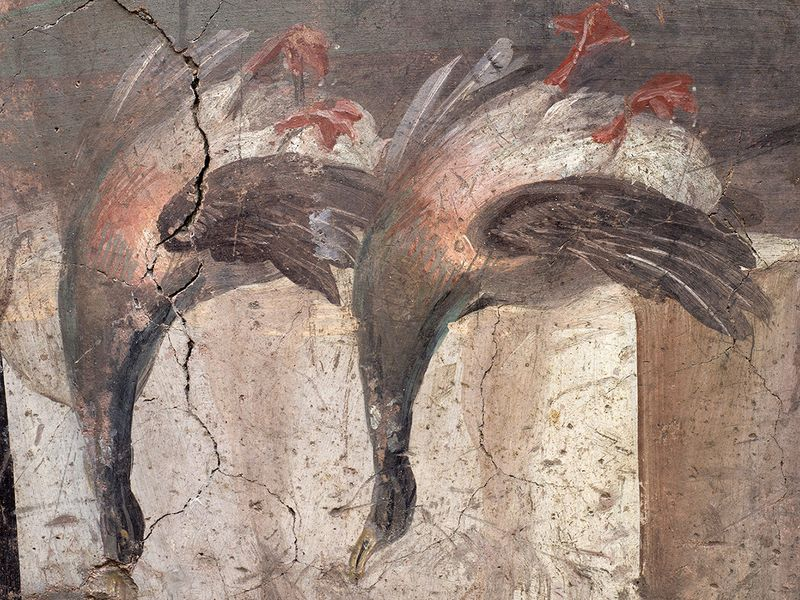 A fresco on an ancient counter depicting two ducks that was uncovered during excavations in Pompeii.
